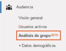 analisis-de-grupo