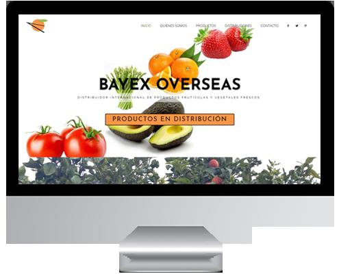desarrollo web bayex